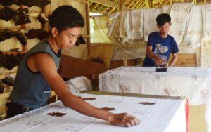 batik cikadu motif badak